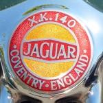 Jaguar 1954-57 XK140 (emblem)