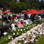 Attendees dine and visit with one another in the formal garden at Greystone