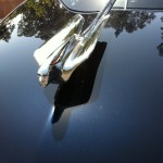 Another fabulous hood ornament on a 1949 Cadillac Series 62
