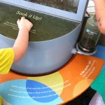 Learning about acquifiers at aquariumofpacific.org/exhibits/our_watersheds