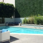 The pool at the newly remodeled and managed MOSAIC Hotel - a quiet stylish escape