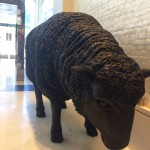 This sheep is the unofficial mascot of the newly remodeled Mosaic Hotel - what should we name him/her?