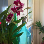 Captured this design vignette at the home of Barrie Livingstone in Malibu - blue glass, orchids and great light!