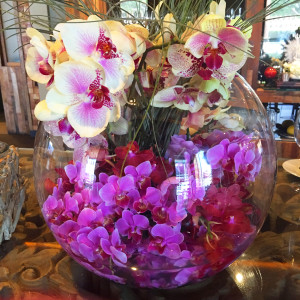 Orchids at the entrance of The District by Hannah An